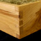 Solid Rowan presentation box with hand cut dovetail joints